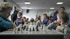 Leeuwarder basisscholen kampioenschap schaken 2016